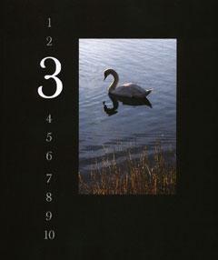 1,2,3 Book Cover