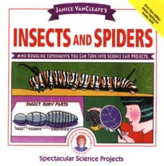 Insects and Spiders Book Cover