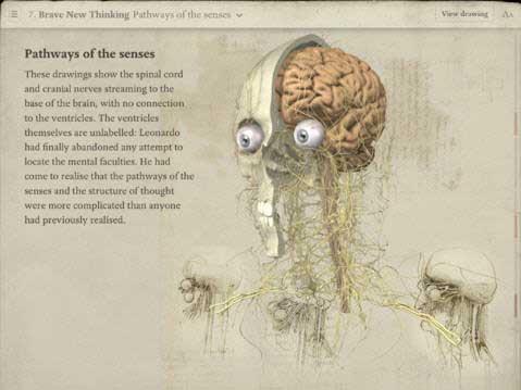 Double Entry and the real da Vinci code  Luca Pacioli and Leonardo     Prezi