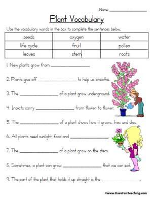 plant vocabulary worksheet education world. Black Bedroom Furniture Sets. Home Design Ideas